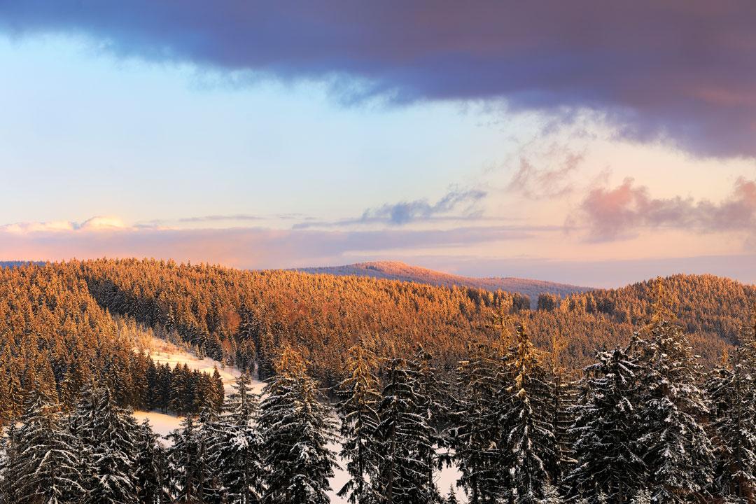 Stille Zeit im Bayerischen Wald